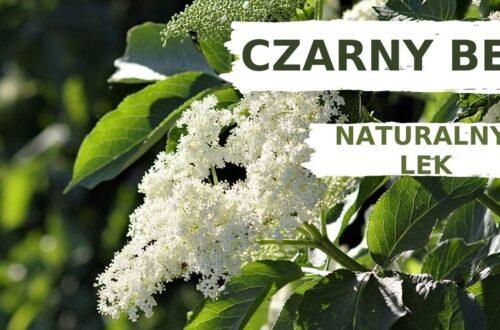naturalny lek